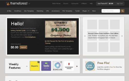 themeforest- ecommerce website design